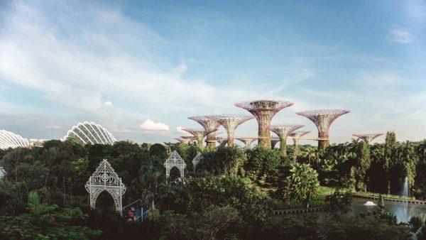 Caso de éxito: la transformación de Singapur en una ciudad jardín sostenible